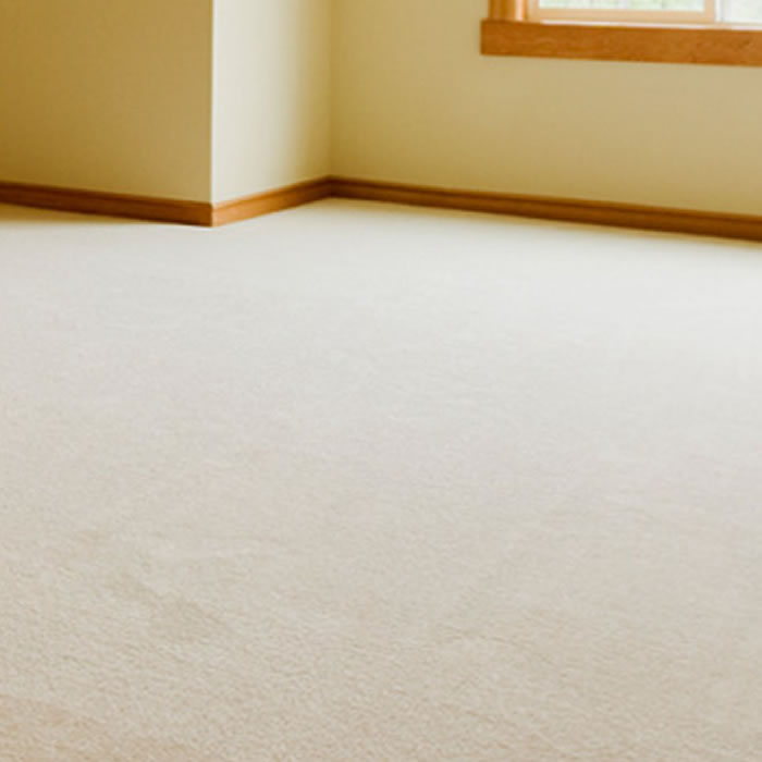 Carpet Cleaning for Swansea & South Wales